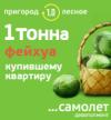 ЖК «Пригород Лесное»